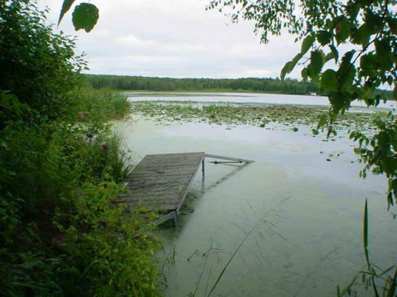 LT4 W Bay Ct, Pearson, WI by Re/Max North Winds Realty, Llc $100,000