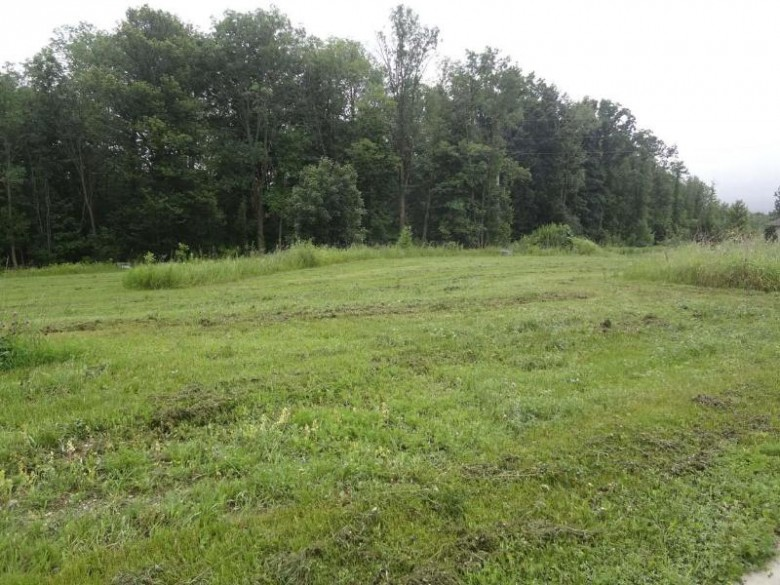 0 Vintage Neighborhood, Plymouth, WI by Pleasant View Realty, Llc $27,900
