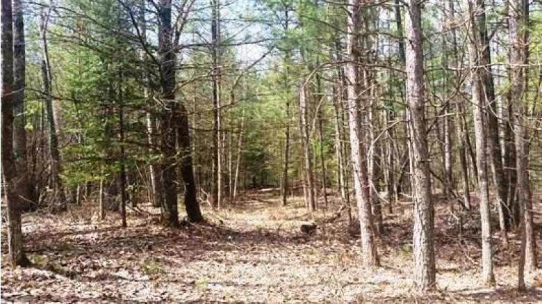 LT50 Menominee Shores Dr, Wausaukee, WI by Boss Realty, Llc $34,900