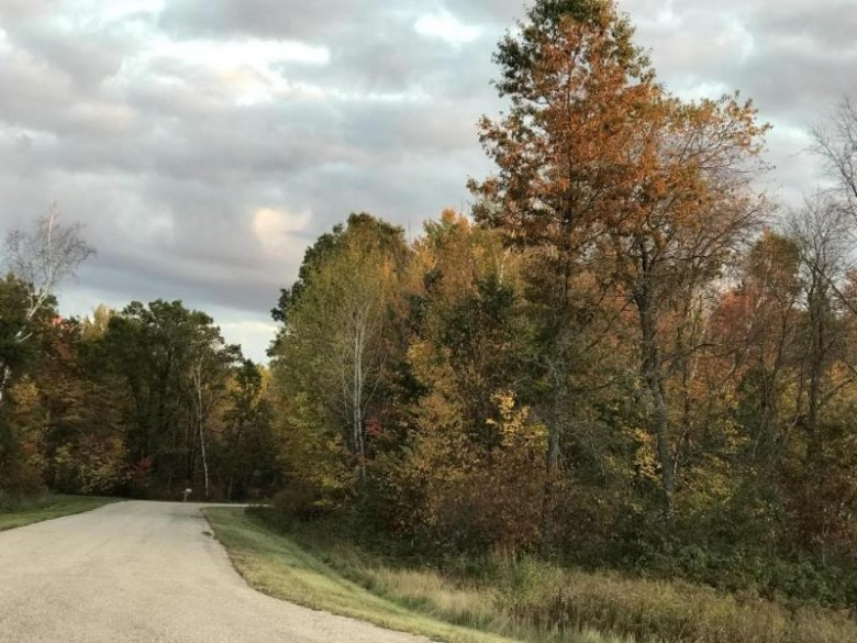 LT5 Finelli Ave, Crivitz, WI by Century 21 Aspire Group $24,900