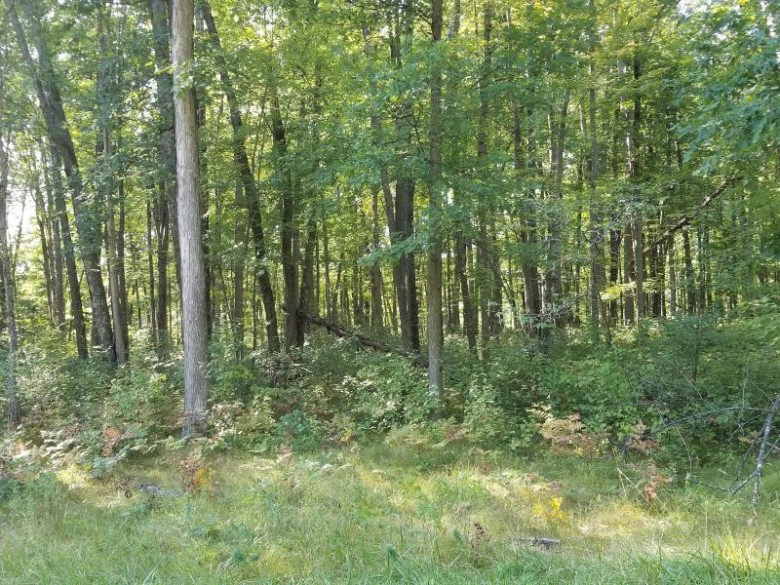 LT 7 Hydro Ct, Crivitz, WI by Bigwoods Realty Inc $74,000