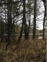 LT 23 Wolf Lake Rd, Wausaukee, WI by Pine Cone Realty Llc $34,900