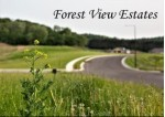 512 Forest View Dr, Holmen, WI by Re/Max Results $59,900