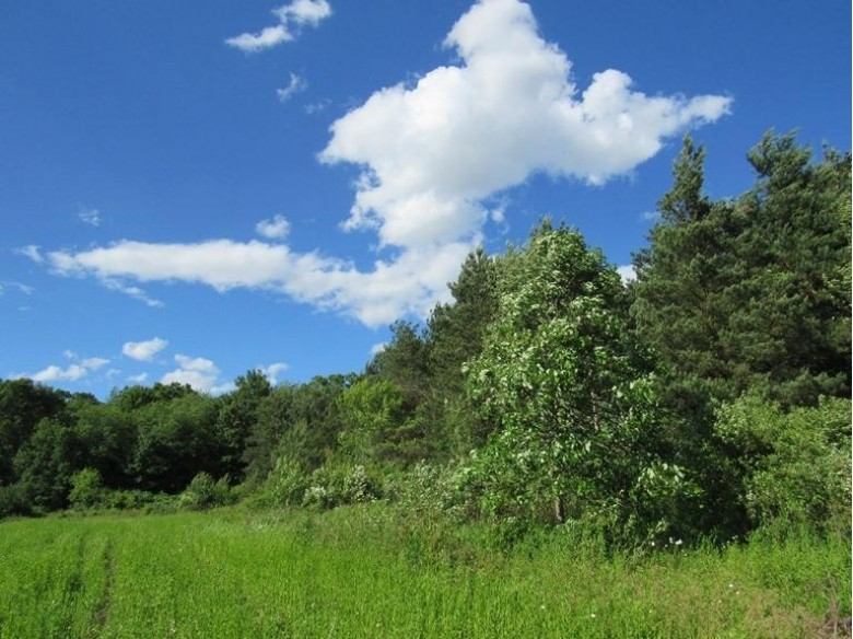 Lt0 128th St, Twin Lakes, WI by Keefe Real Estate, Inc. $389,900