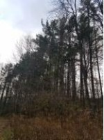 +-5.4 AC. County Rd Jj PARCEL #4, Manitowoc, WI by Heritage Real Estate $97,900