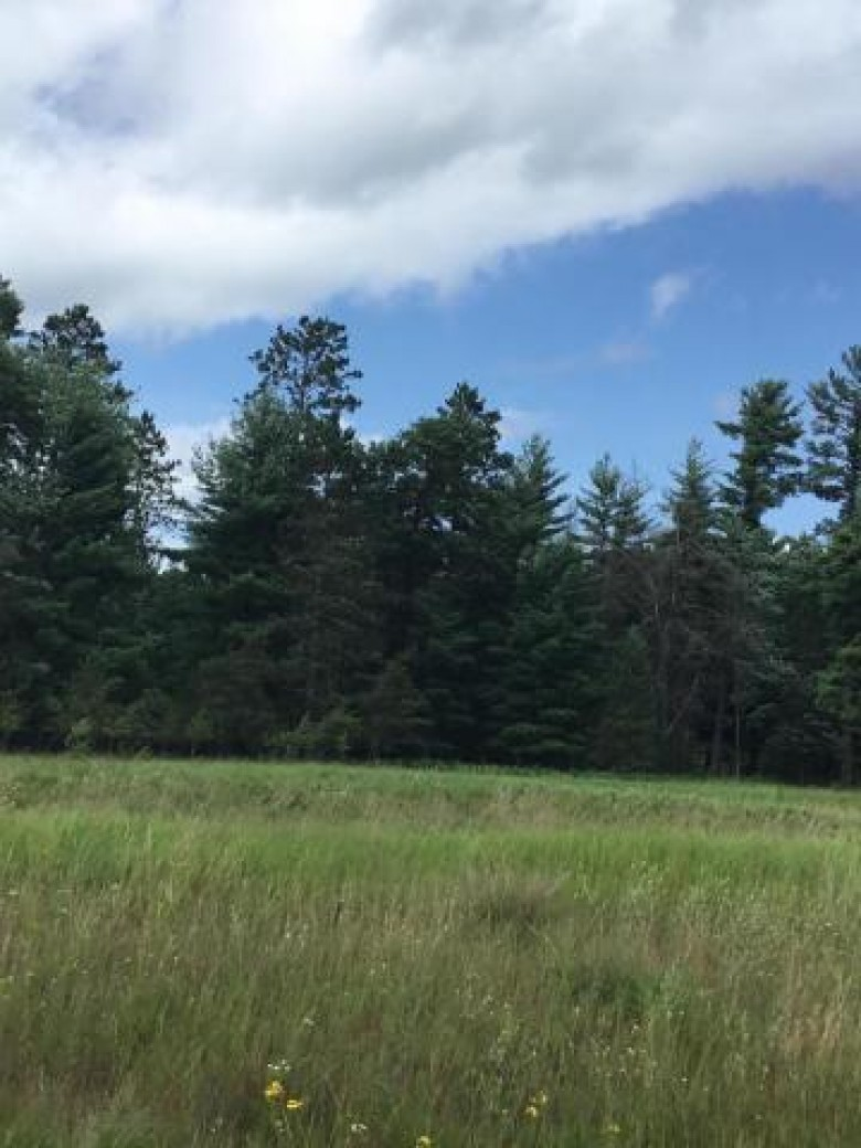 2.53 ACRES N Three Rivers Landing Rd, Wausaukee, WI by Pine Cone Realty Llc $20,000