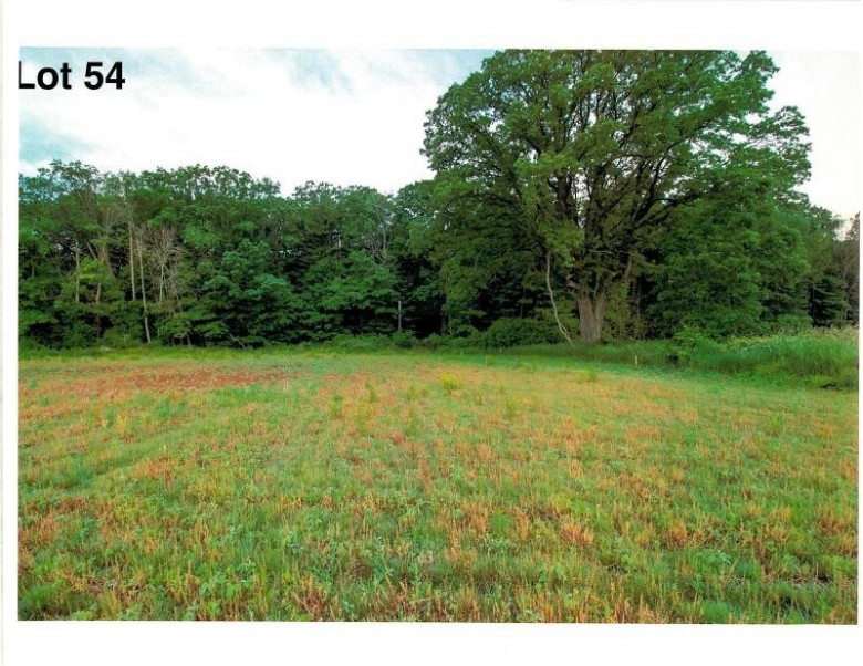 LOT 54 The Clearings, Kohler, WI by Village Realty & Development $117,200