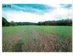 LOT 73 The Clearings, Kohler, WI by Village Realty & Development $104,100