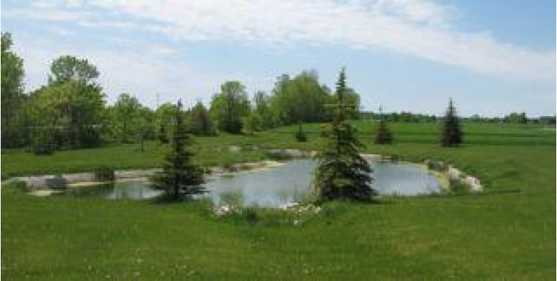 LOT 6 Danmar Acres Development, Whitelaw, WI by Gottsacker Real Estate Co $23,000