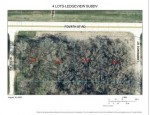 LT4 4th St, Fond Du Lac, WI by Point Real Estate $24,900
