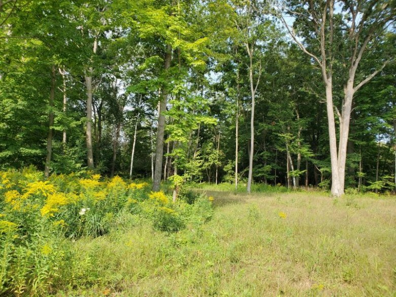 LT7 Red Fox Ln Manitowoc, WI 54220 by Action Realty $64,900