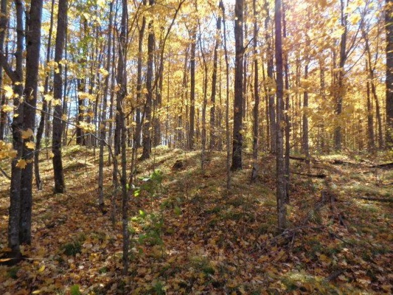 LT 9 Hydro Ct, Crivitz, WI by Whitewater Realty $39,900