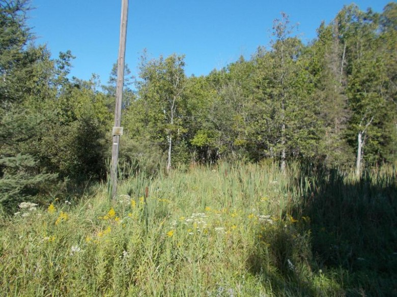 TBD N4 Lane, Carney, MI by Broadway Real Estate $104,500