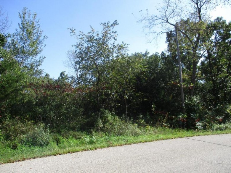 LT83 Bubbling Springs Dr LT84, Elkhorn, WI by Nexthome Success ~whitewater $29,900