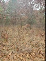 LOT 2 17th Ave, Necedah, WI by Berkshire Hathaway Homeservices North Properties $84,900