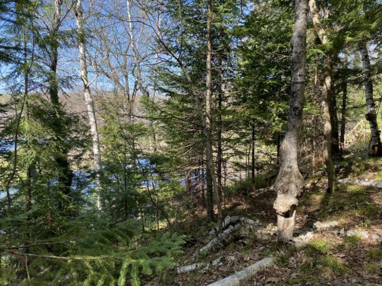 1.2 ACRES South Loop Dr LOTS 34 & 35, Armstrong Creek, WI by Coldwell Banker Real Estate Group Mi/Wi $59,000