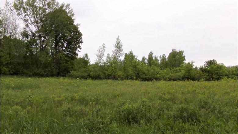 LT2 Forest Dr, Mayville, WI by The Real Estate Company Lake & Country $199,800
