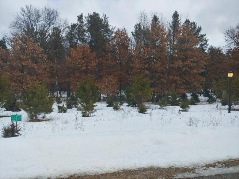 N8038 North Shore Dr, New Lisbon, WI by Re/Max United - West Bend $43,900