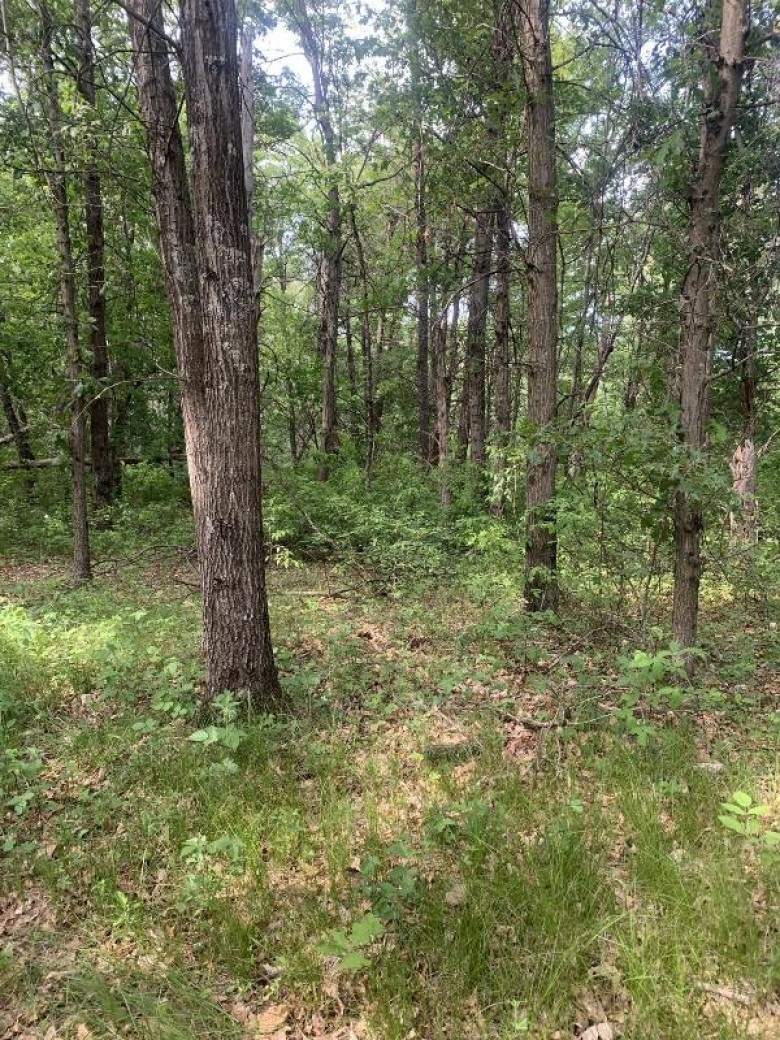 1870 Eagle Ct Friendship, WI 53934 by First Weber Real Estate $37,000