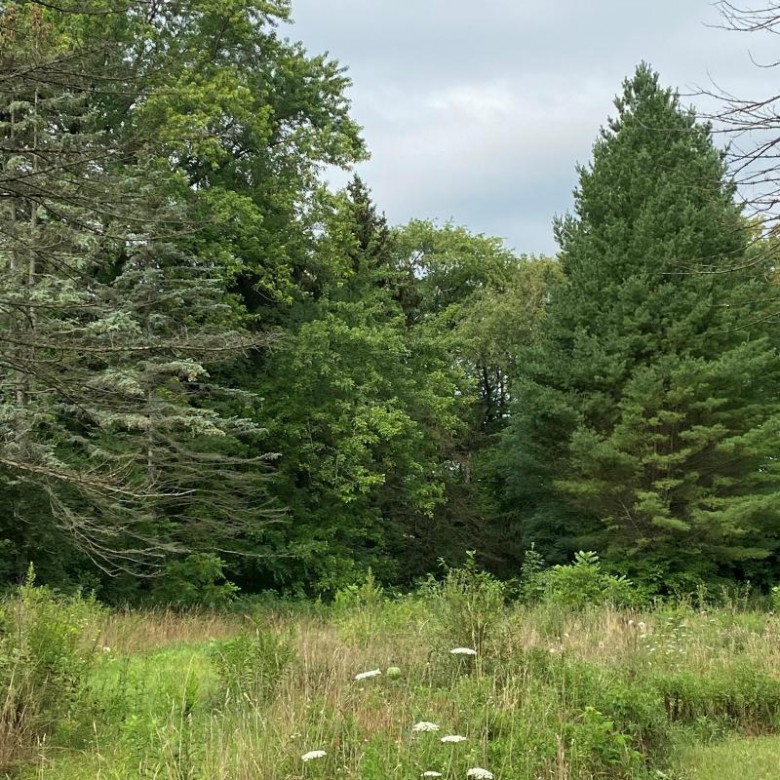 LT0 328th Ave, Burlington, WI by Keefe Real Estate-Commerce Ctr $98,000