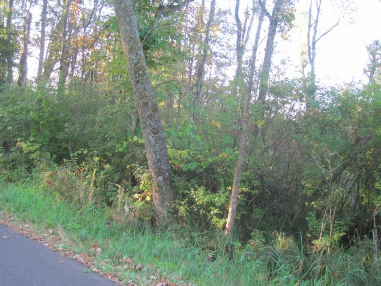 3933 Chicago Rd, Redgranite, WI by Century 21 Affiliated-Wauwatosa $39,900