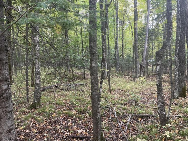 LT0 Bear Paw Rd, Amberg, WI by North Country Real Est $19,900