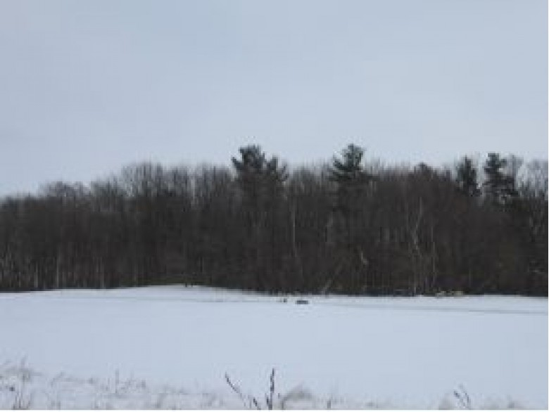 N877 Eunice Court LOT 3E, Fremont, WI by Coldwell Banker Real Estate Group $34,900