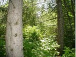 Hwy 64 Lot 1, White Lake, WI by RE/MAX North Winds Realty, LLC $19,000