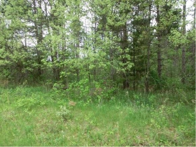 Hwy F Lot 4 Wautoma, WI 54982 by First Choice Realty, Inc. $105,000