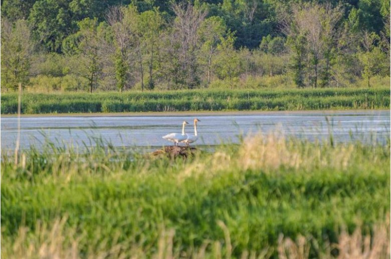 N1599 Hwy Xx, Berlin, WI by United Country-Udoni & Salan Realty $824,900