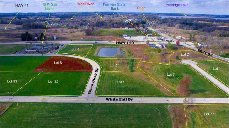 Wood Duck Drive, Fremont, WI by Rieckmann Real Estate Group, Inc $49,000