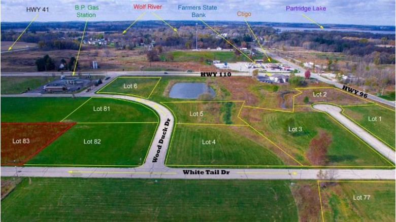 White Tail Drive, Fremont, WI by Rieckmann Real Estate Group, Inc $39,000