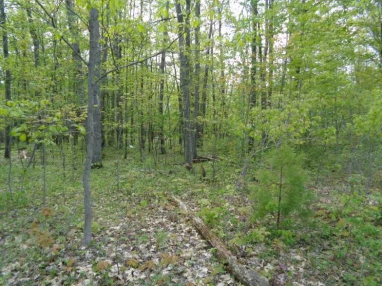 Hedgewood Court, Abrams, WI by Boss Realty, LLC $35,900