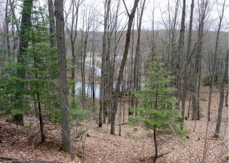 7577 Jungle Lake Road, Pickerel, WI by Whitetail Dreams RE dba Waterfront Dreams $169,900