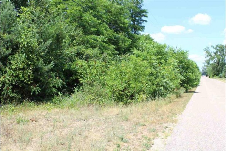 Pine Street, Plainfield, WI by Beiser Realty, LLC $129,900