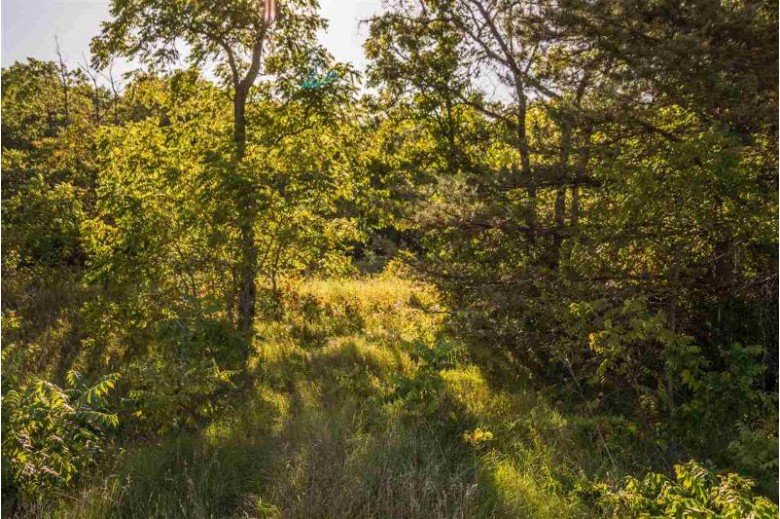 Hwy 22, Wautoma, WI by Coldwell Banker Real Estate Group $19,000