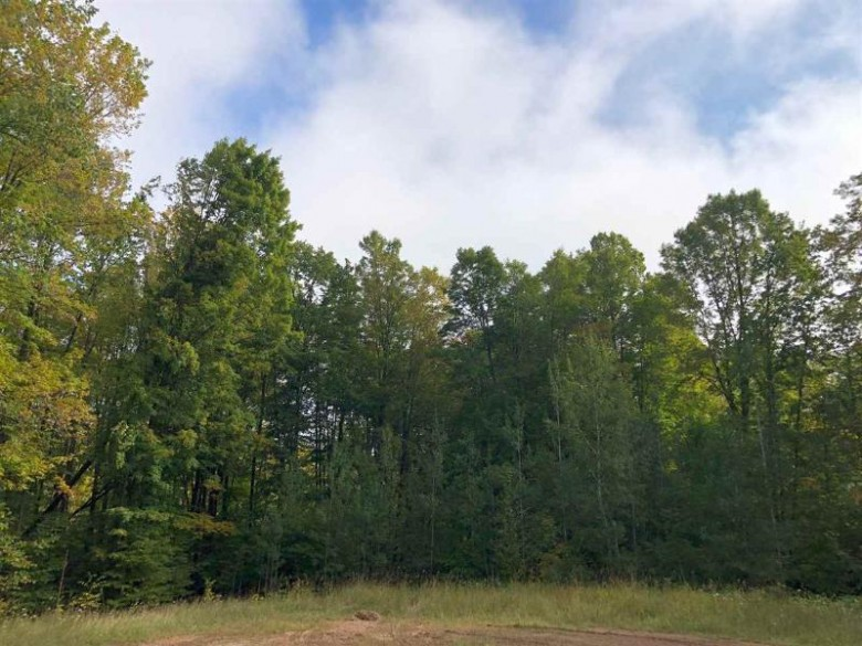 James Way, Pound, WI by Gina Cramer Realty LLC $19,900