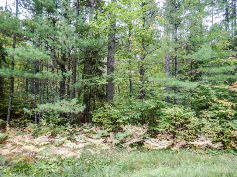 Moonlight Drive, Eagle River, WI by Executive Realty $39,900