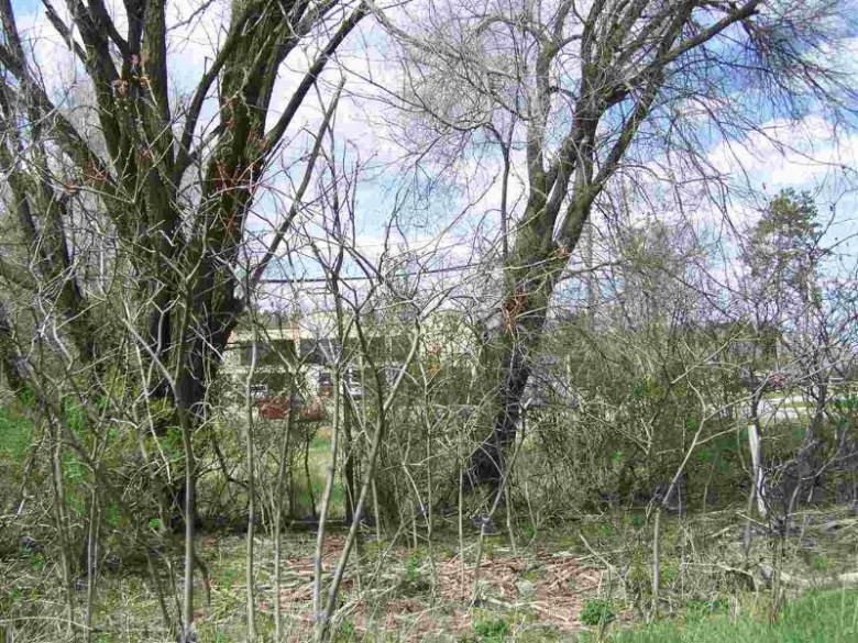 Hwy 21, Redgranite, WI by First Weber Real Estate $15,400