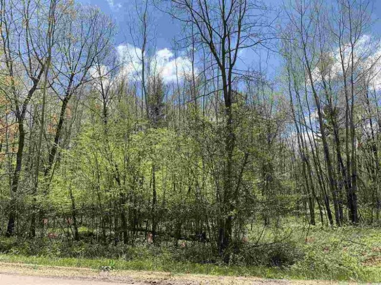 Lime Ridge Road, Shawano, WI by Coldwell Banker Real Estate Group $34,500