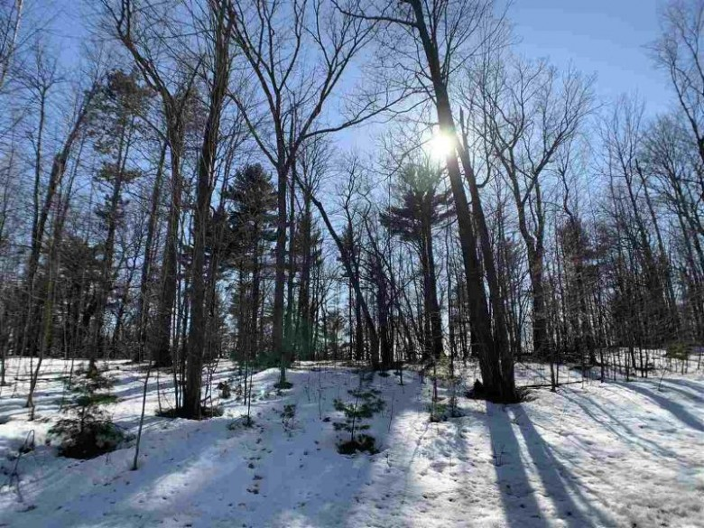 Oak View Drive, Shawano, WI by Coldwell Banker Real Estate Group $54,900