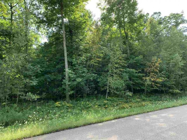 Oak View Drive, Shawano, WI by Coldwell Banker Real Estate Group $59,900
