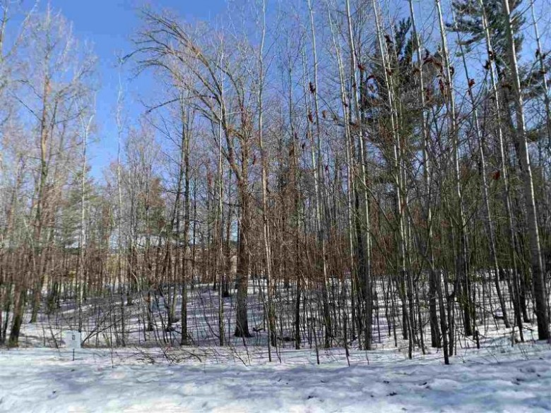 Oak View Drive, Shawano, WI by Coldwell Banker Real Estate Group $51,900