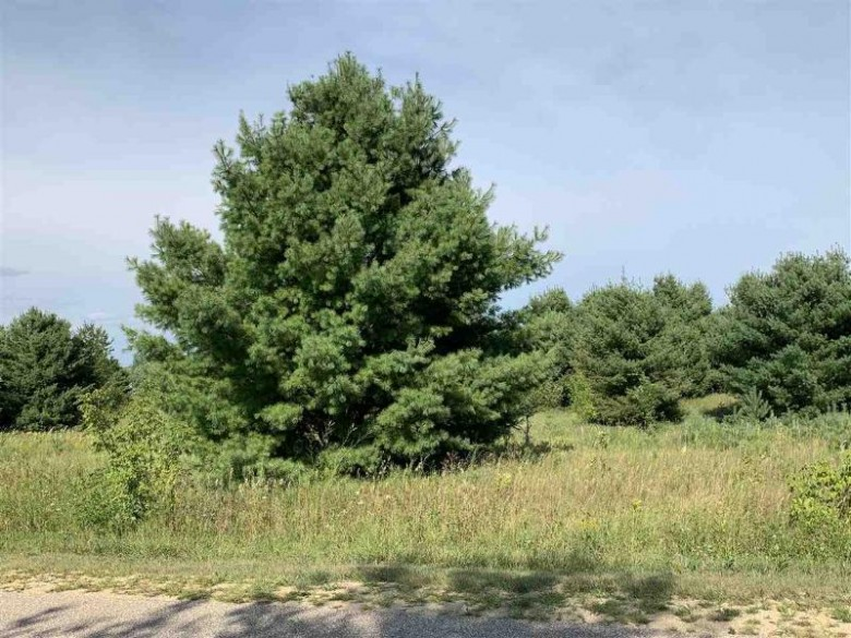 Oak View Drive, Shawano, WI by Coldwell Banker Real Estate Group $31,900