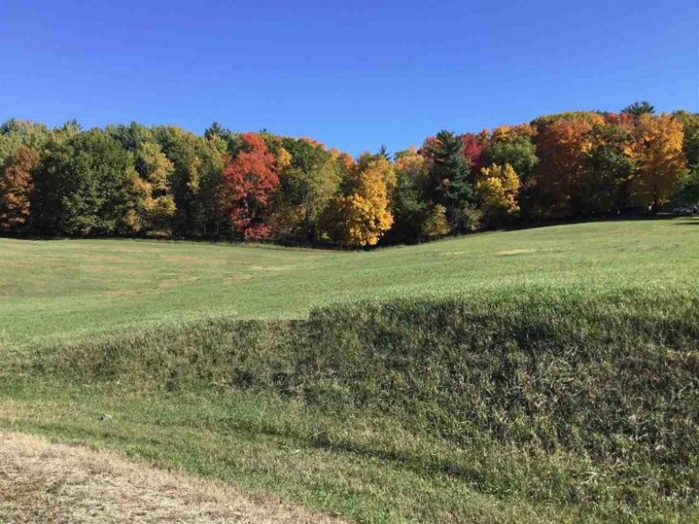 Quintessence Court, New London, WI by RE/MAX 24/7 Real Estate, LLC $89,444