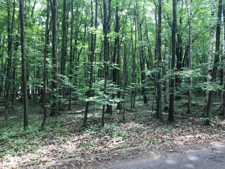 Daisy Patch Road, Fish Creek, WI by Shorewest, Realtors $58,500