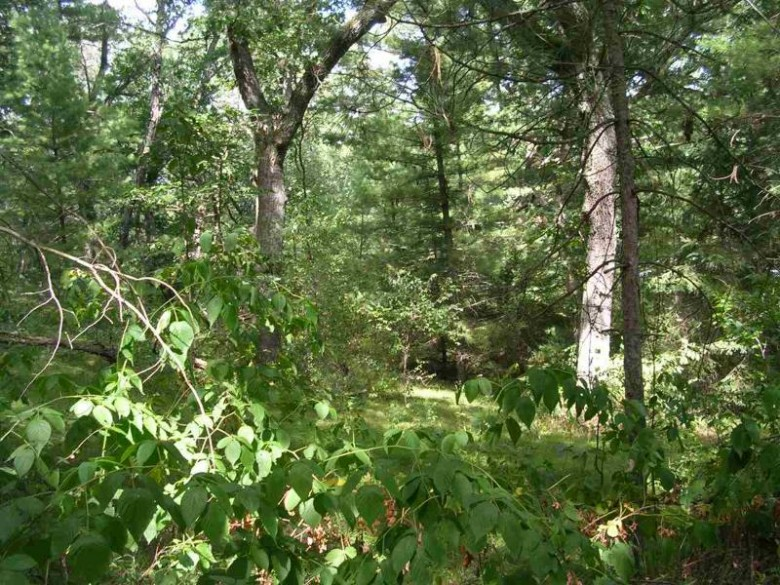 Nakoma Avenue, Wautoma, WI by Coldwell Banker Real Estate Group $39,900