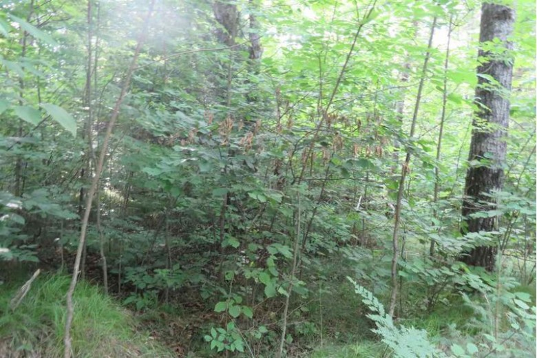 13270 Coyote Court, Long Lake, WI by Coldwell Banker Bartels Real Estate, Inc. $17,900