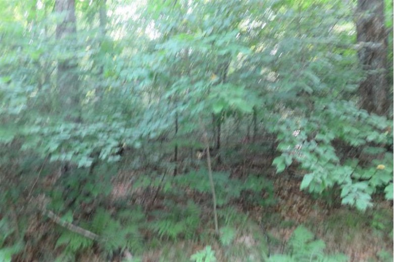 Coyote Court, Long Lake, WI by Coldwell Banker Bartels Real Estate, Inc. $17,900
