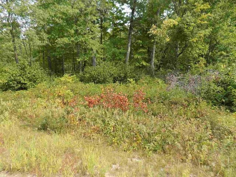 Crimson Lane, Pound, WI by RE/MAX North Winds Realty, LLC $24,000